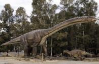 Dinosaure Argentinosaurus