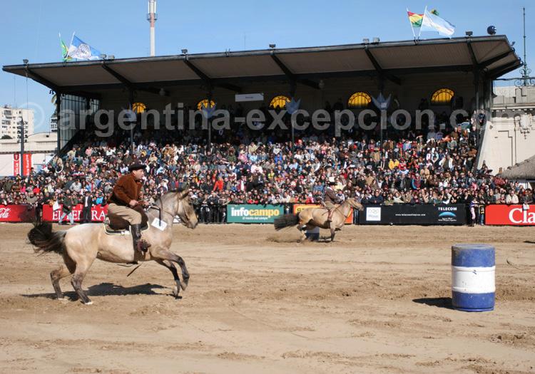 Course chevaux Buenos Aires avec Argentina Excepción