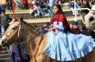 Muestra de caballos en Salta