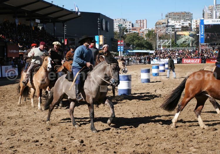 Démonstration équestre, Buenos Aires avec Argentina Excepción