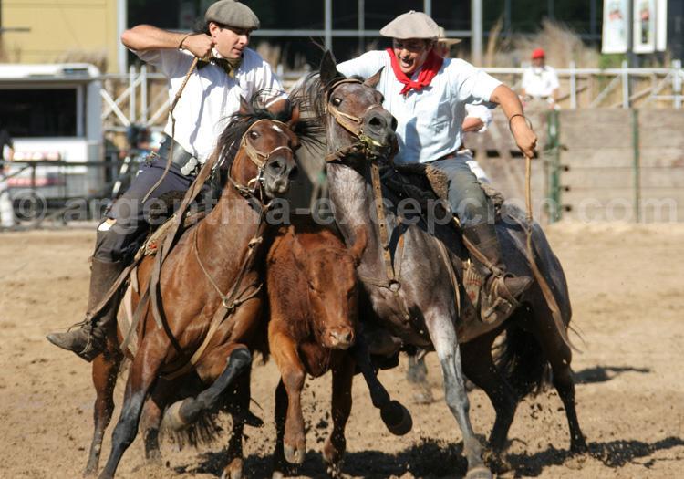 Démonstrations équestres, la Rural avec Argentina Excepción