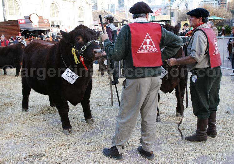 Éleveurs de La Rural à Buenos Aires avec Argentina Excepción