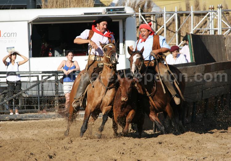 Feria nuestros caballos, la Rural avec Argentina Excepción
