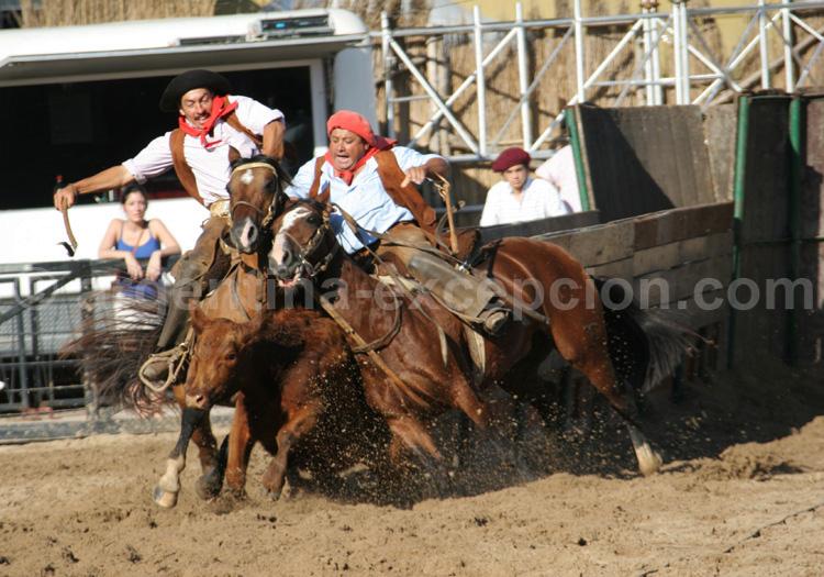 Feria nuestros caballos, Buenos Aires avec Argentina Excepción