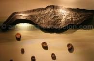 Fossiles, Musée paléontologique de Trelew