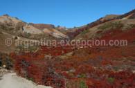 Paso de Cordoba, Patagonie