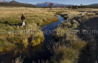 Rivers full of fishes of Tres Valles, Patagonia