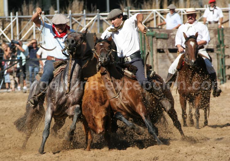 La Rural Buenos Aires, chevaux avec Argentina Excepción