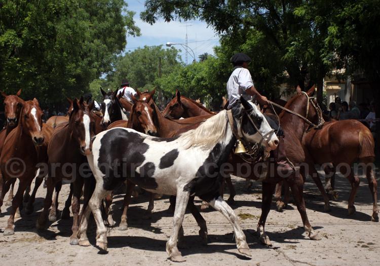 Día de la Tradición, San Antonio de Areco