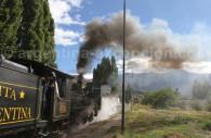 La Trochita de Patagonie