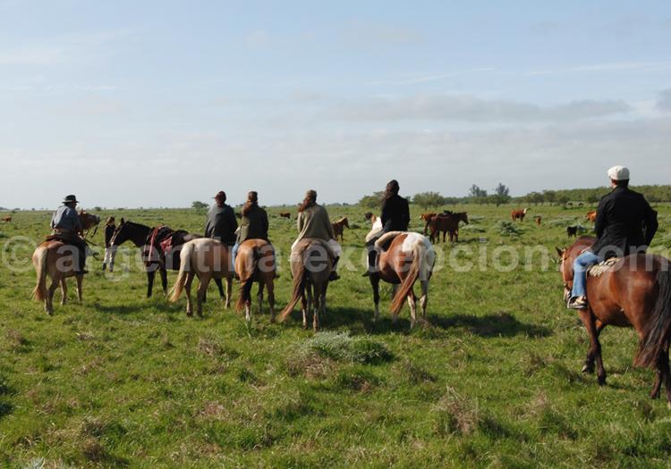 Estancia las Viboras, promenade à cheval