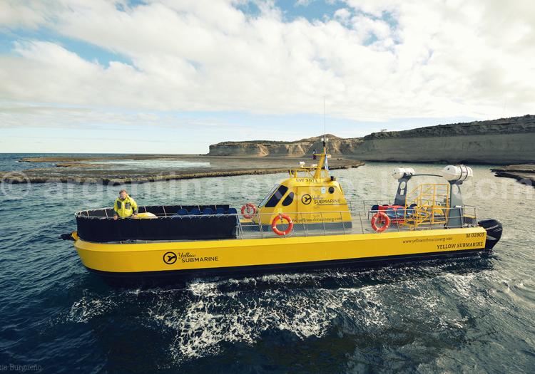 Excursion nautique péninsule Valdés
