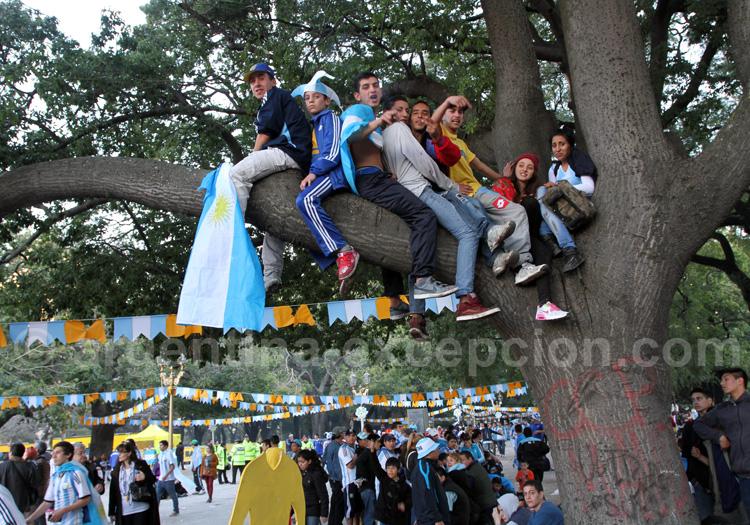 supporters argentins finale coupe du monde