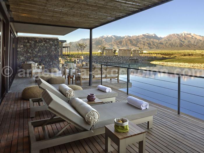 The Vines of Mendoza