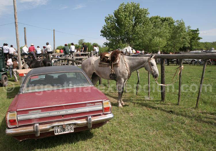 Louer une voiture pour un voyage en Argentine