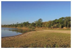 Parc national l'Impénétrable, Chaco, Argentine