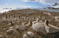 Paysage d'Antarctique © Alex Benwell