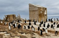 Cap Adare, Antarctique © Dan Leeth