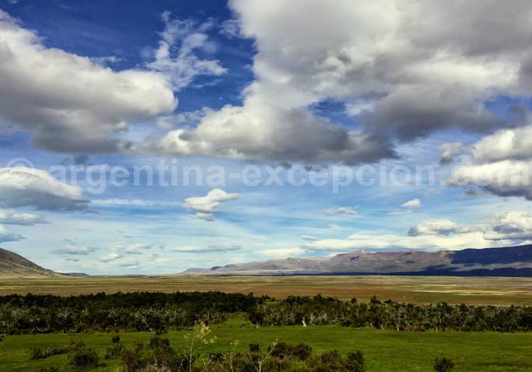 Steppe de Patagonie