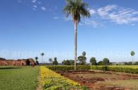 Palmiers, Jesús de Tavarengue