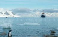 Crucero en Antartida – CC Evan Costigan Evancos