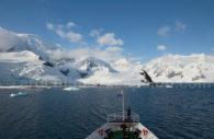 Crucero de lujo en Antartida