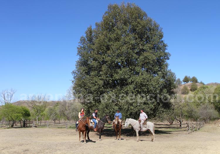 Balade à cheval, Pampa Grande