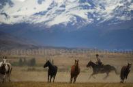 Gauchos, El Calafate, Patagonie