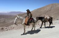 Voyage personnalisé dans la région de Salta