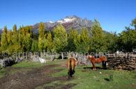 Parc Lanin, Patagonie Nord