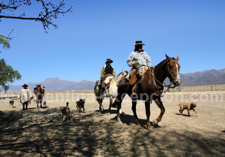 Voyage sur mesure à Salta