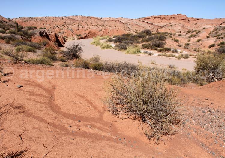 Los Colorados, amphithéâtre naturel