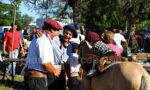 San Antonio de Areco : Día de la Tradición