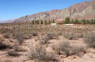 Parc national los Cardones, Nord Ouest Argentin