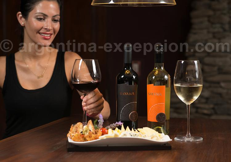 Dégustation des Vinas de Cafayate