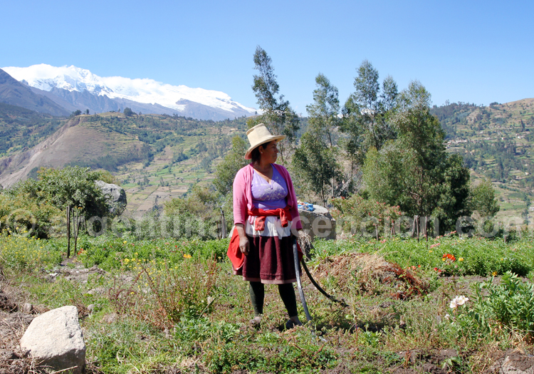 Le Pérou sur mesure