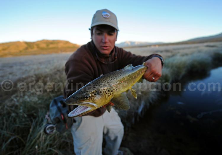 La Patagonie, paradis de la pêche