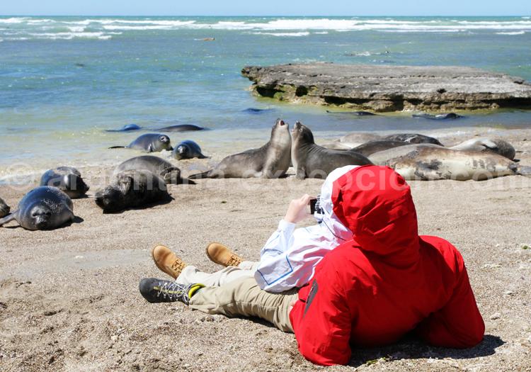 Observation de la faune marine, Rincon Chico