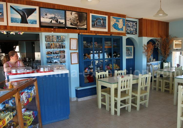 Restaurant Punta Norte, Patagonie