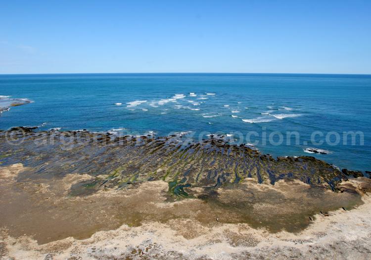 Punta Delgada, Argentine
