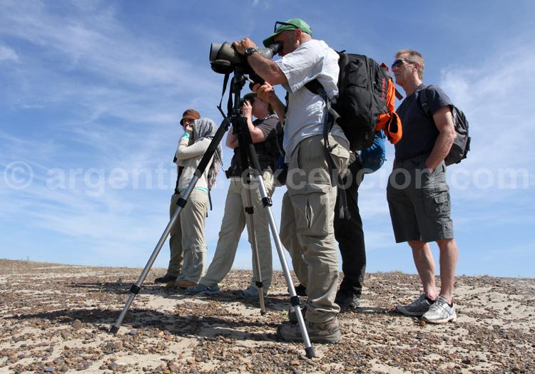 Observation de la faune, Rincon Chico