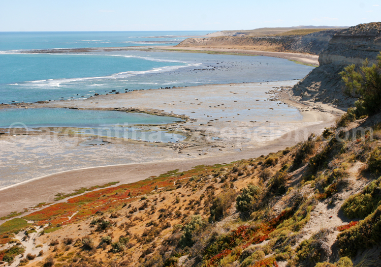 Punta Delgada, Patagonie Nord