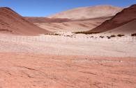 Paysage aride du nord de l'Argentine