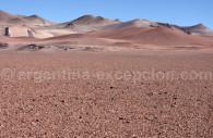 Hauts plateaux argentins