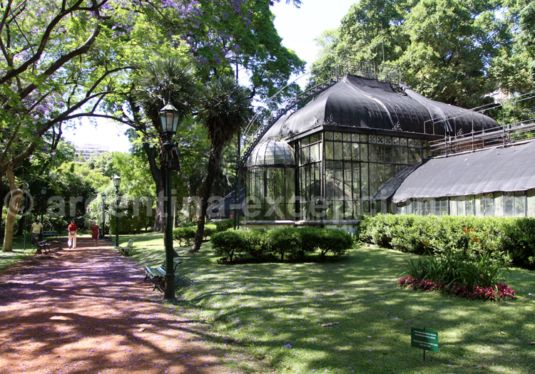 Les verrières du jardin botanique de Palermo