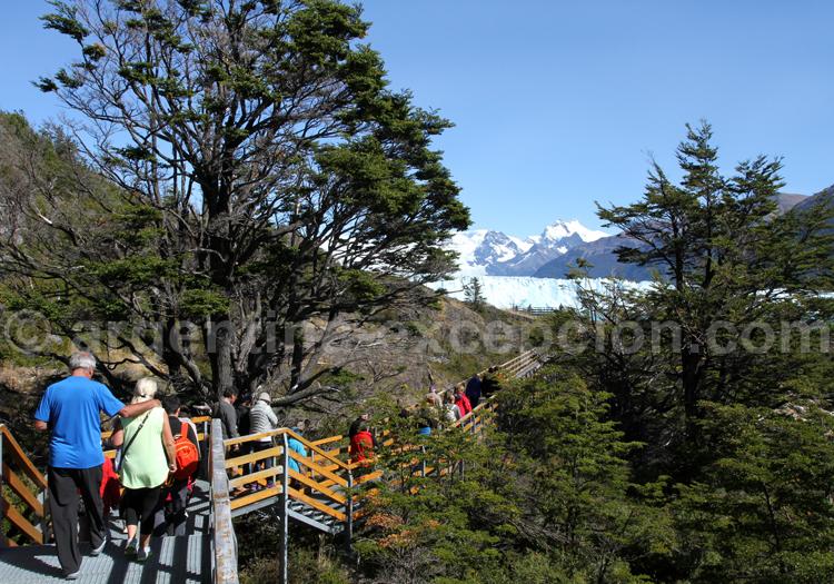 Visite du site Perito Moreno