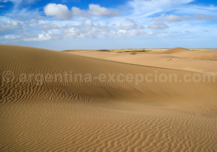 Patagonie Atlantique