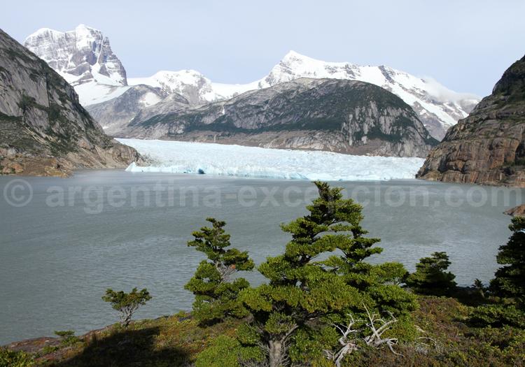 Glaciar Mayor