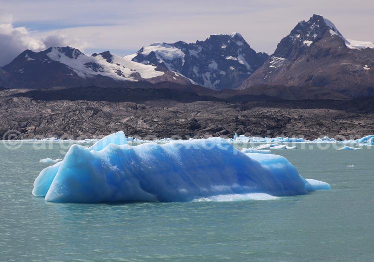 Icebergs, lac Argentino