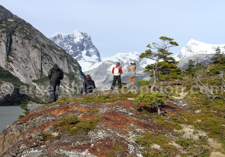 Observation des glaciers